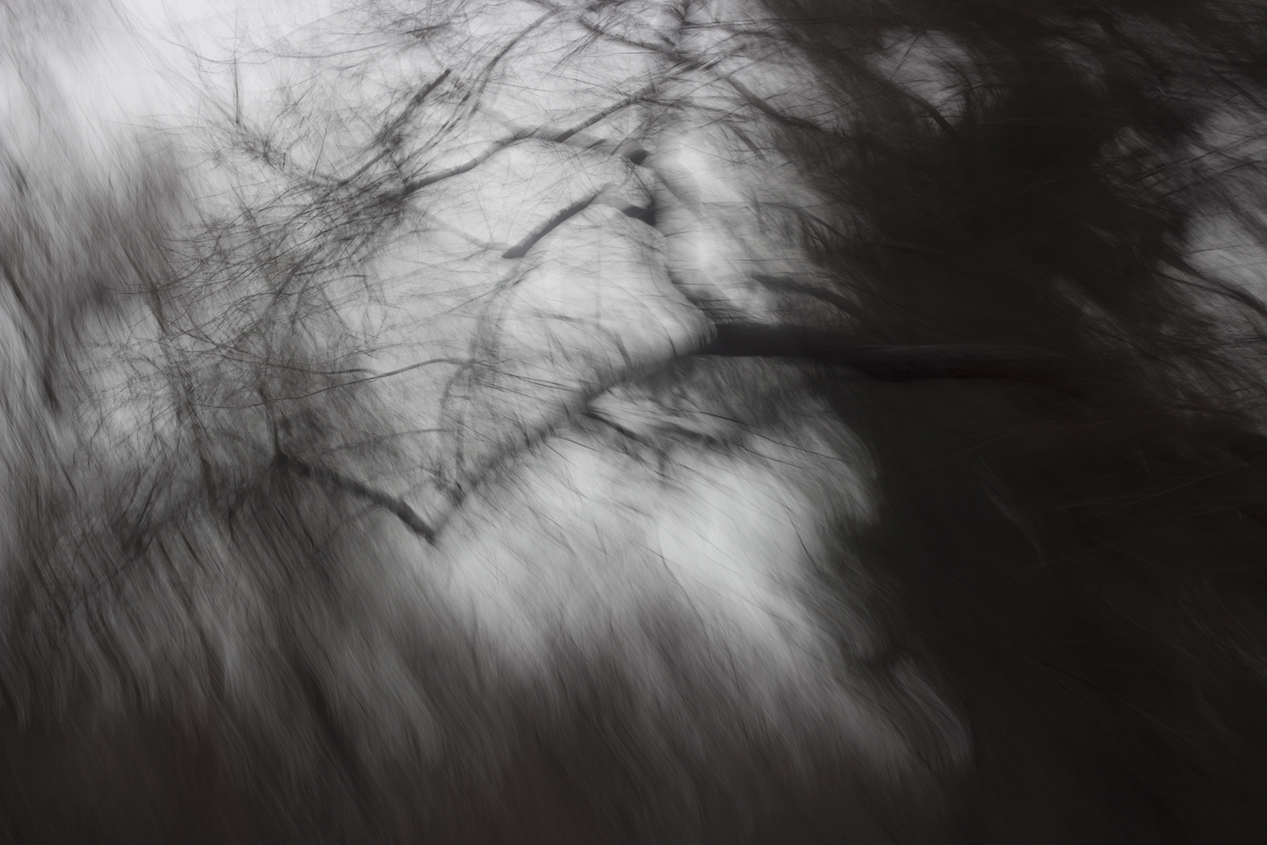 Mahnoor_Khan_The World Of Duality_Ghosts Among Us_03.jpg