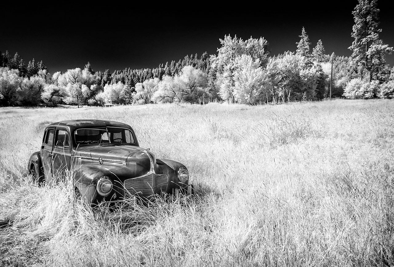Beamie_Young_Palouse_Decaying_Dodge_03.jpg