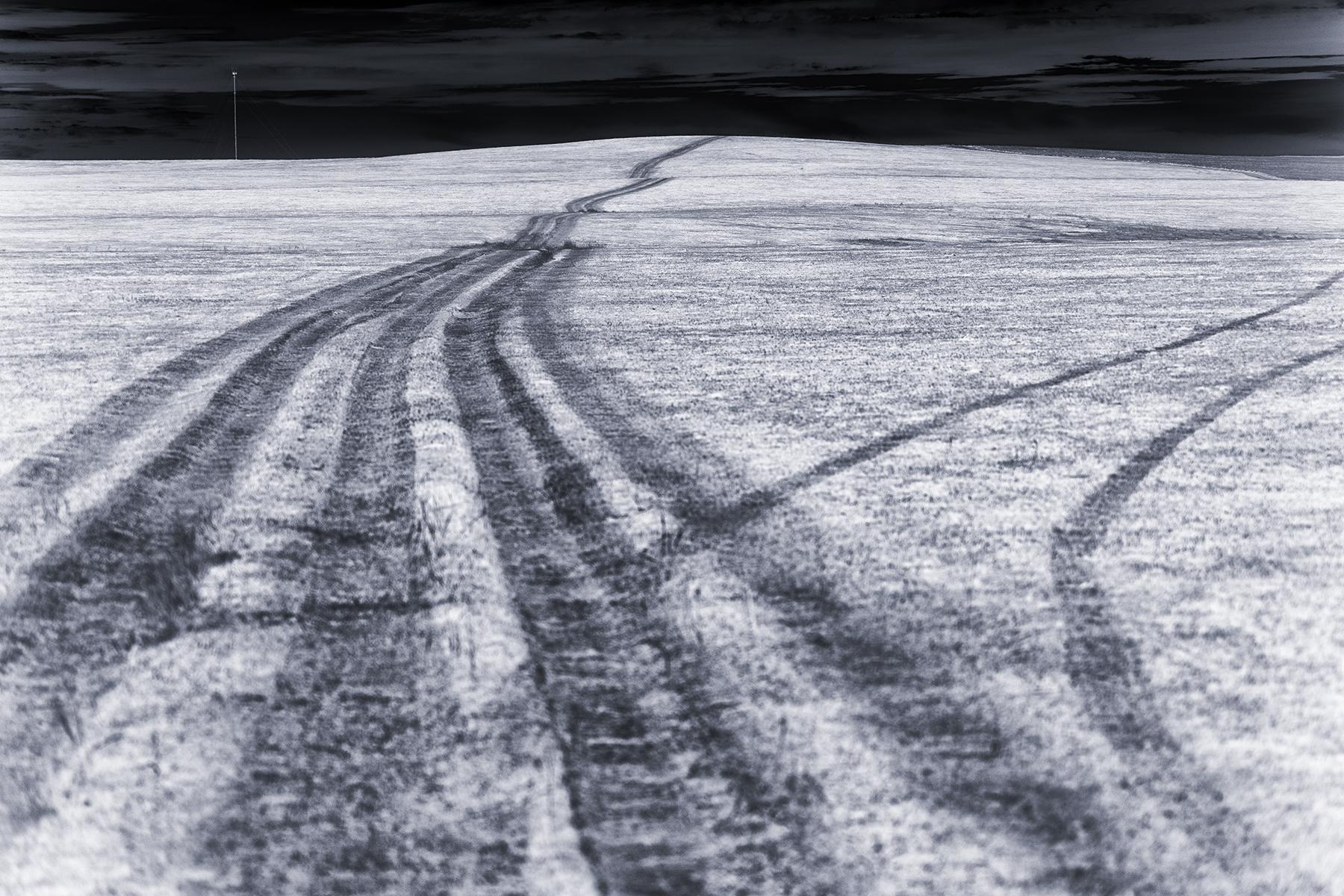 Lennette_Newell Burned tire tracks.jpg