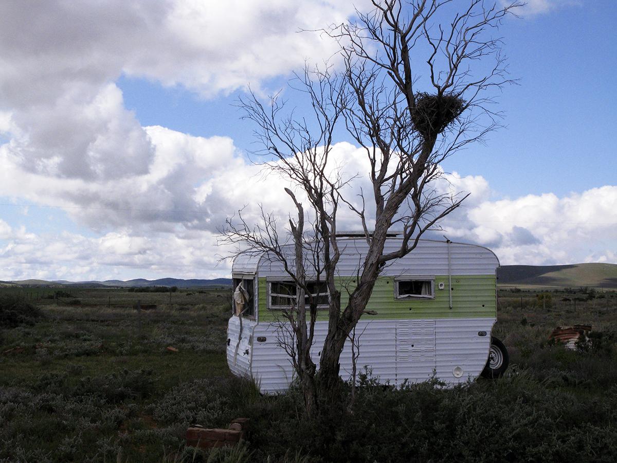 Annette_Willis_Home on the Range.jpg