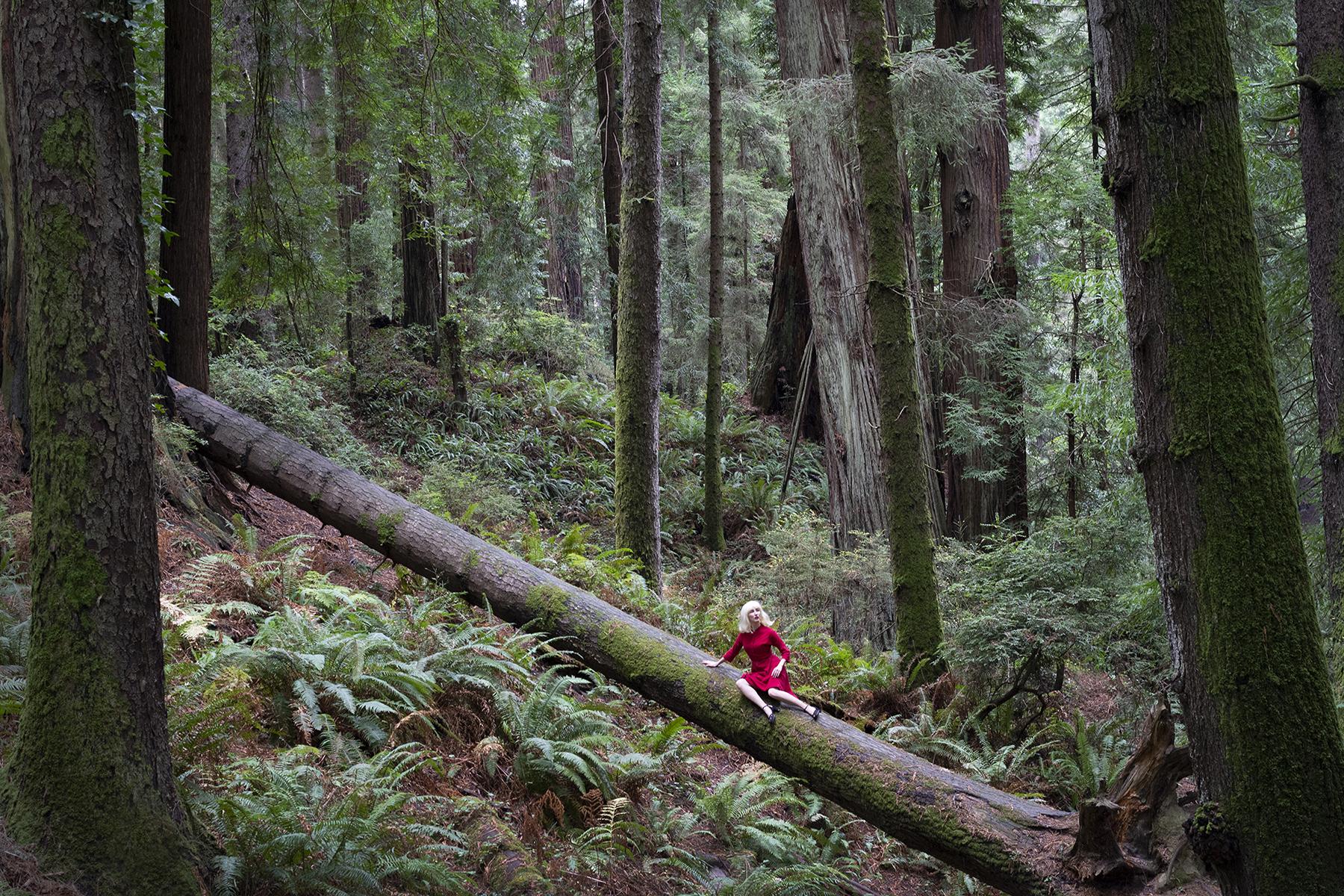 Nicole_Cudzilo_TheEdge_Forest_4.jpg