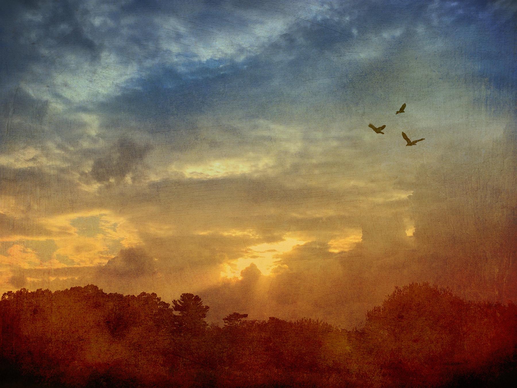 Catherine_Caddigan_Sunset.jpg