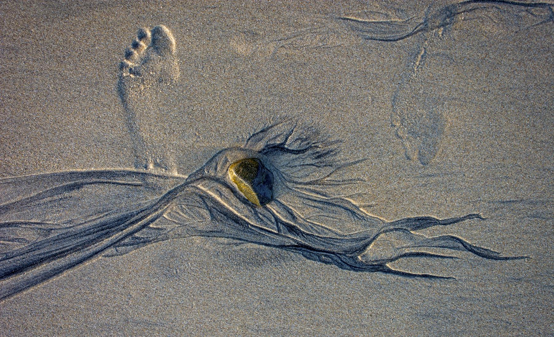 willa_davis_Surf-Works-Untitled_05.jpg