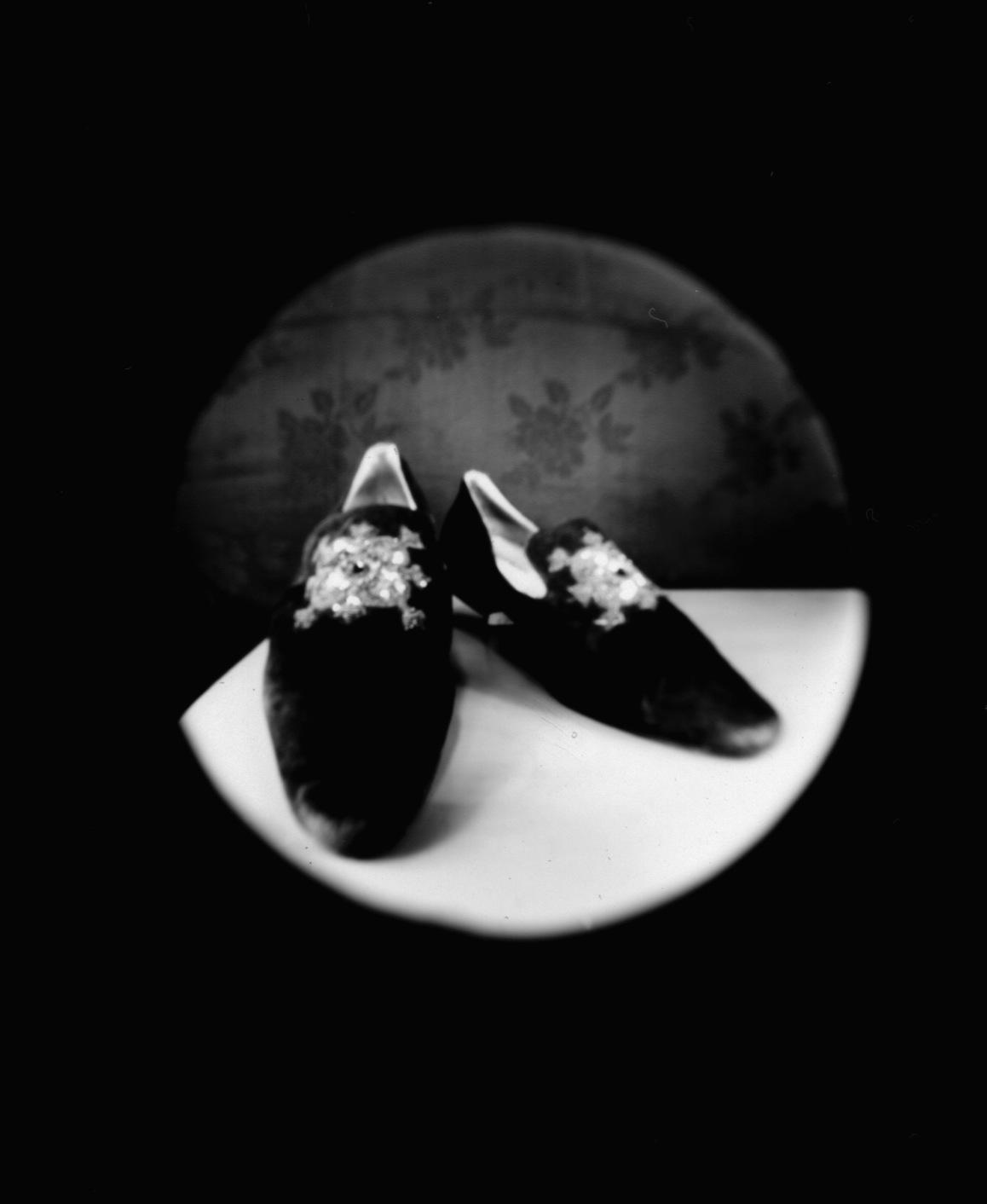 vikygarden_portrait of elaine's shoes.jpg