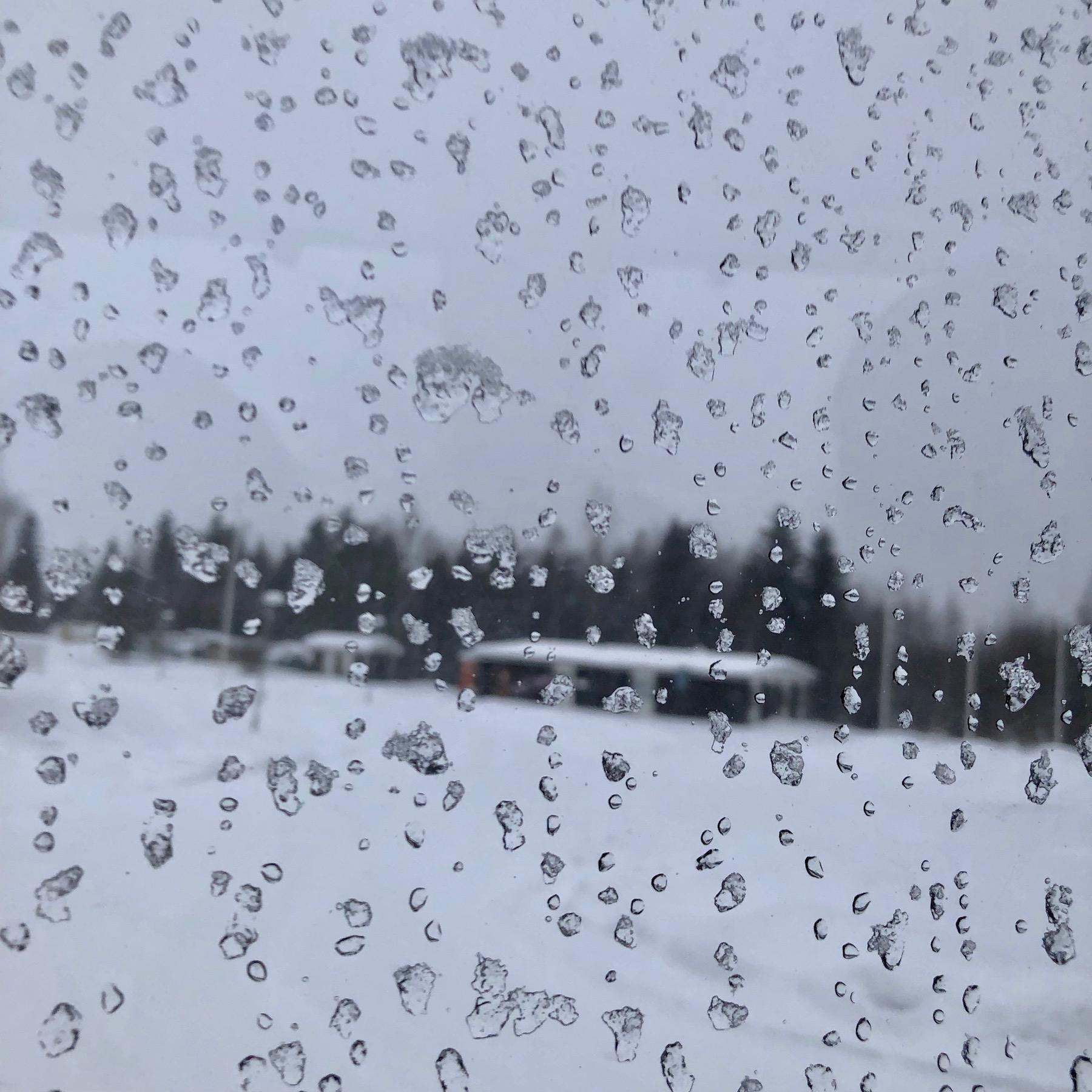 Carole_Glauber_Lapland Journey_2.jpg