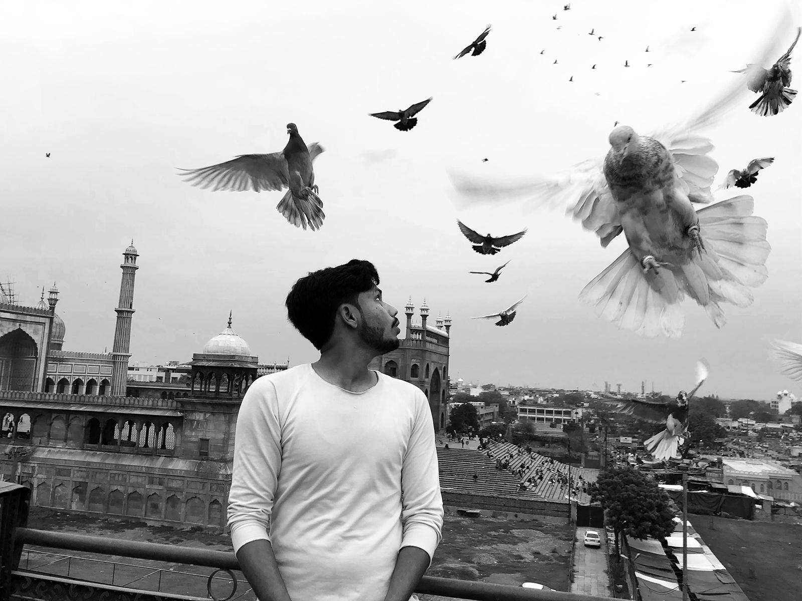 Robi_Chakraborty_pigeons.jpg