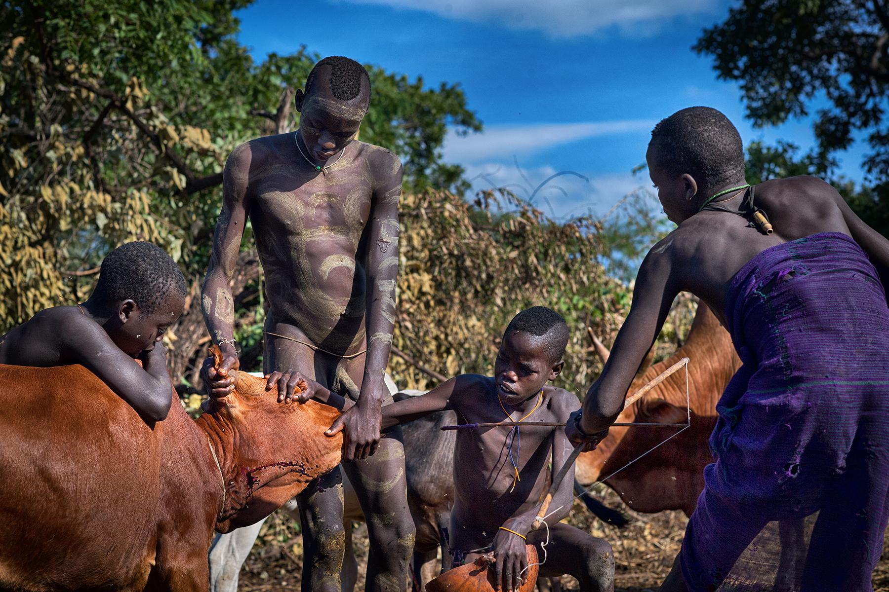 David Nam Lip_LEE_The Ritual Belong To The Suri Tribe Of Ethiopia_Cow Blood Drinking_08.jpg