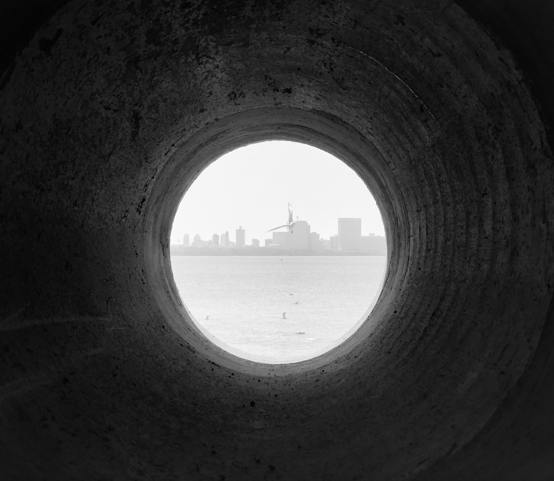 Mayur_Sarma_World through a water pipe.jpg