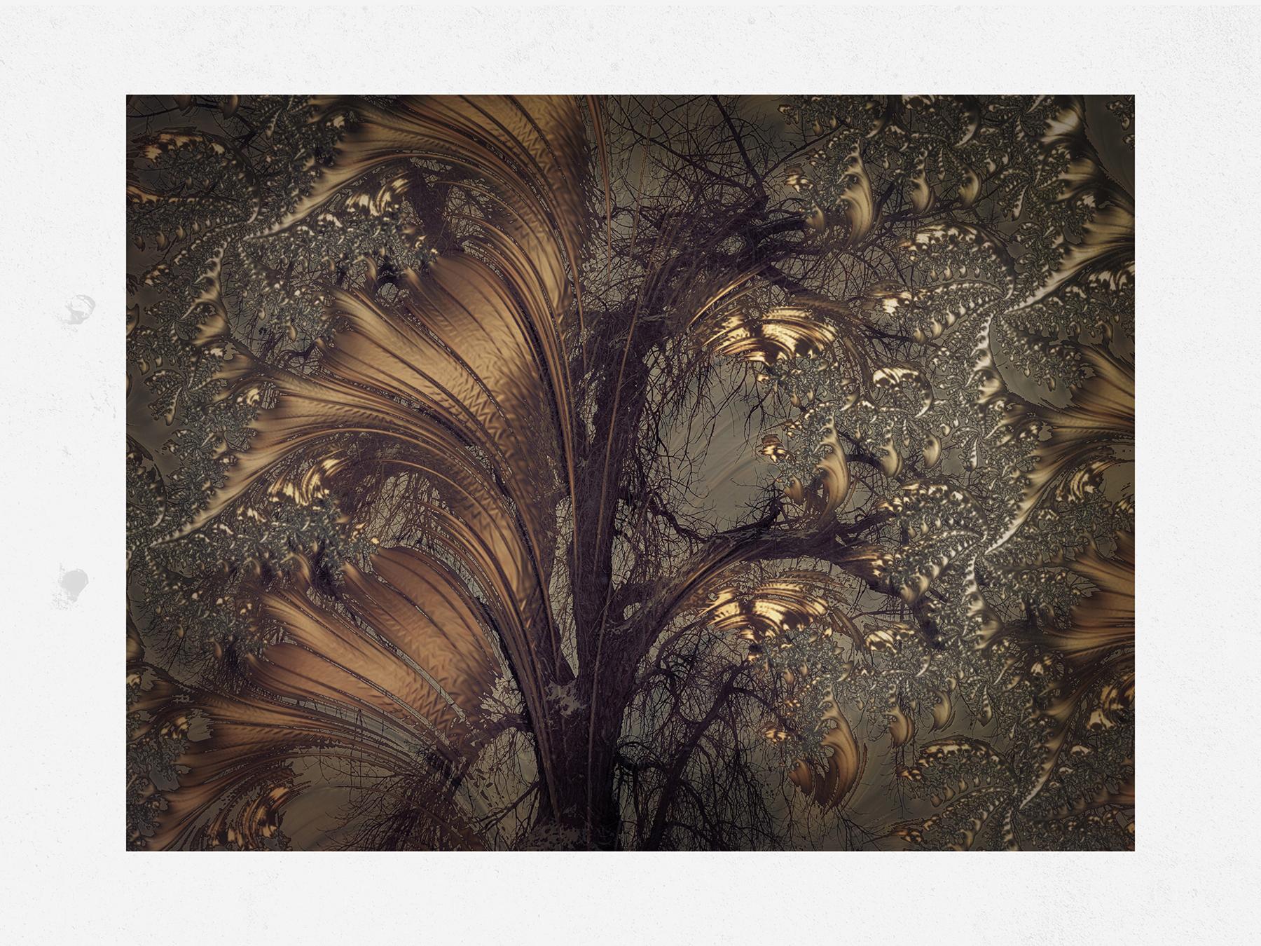 Kate_Zari Roberts_Nature Fractals_Tree Fractal_3.jpg