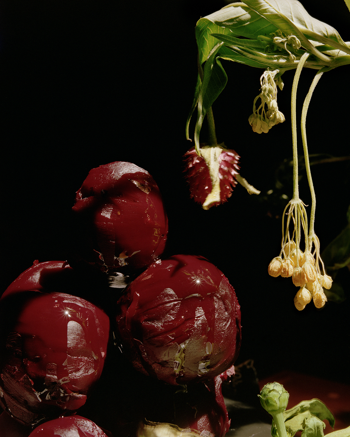 Emma_Ressel_Red_beets_and_olive_oil.jpg