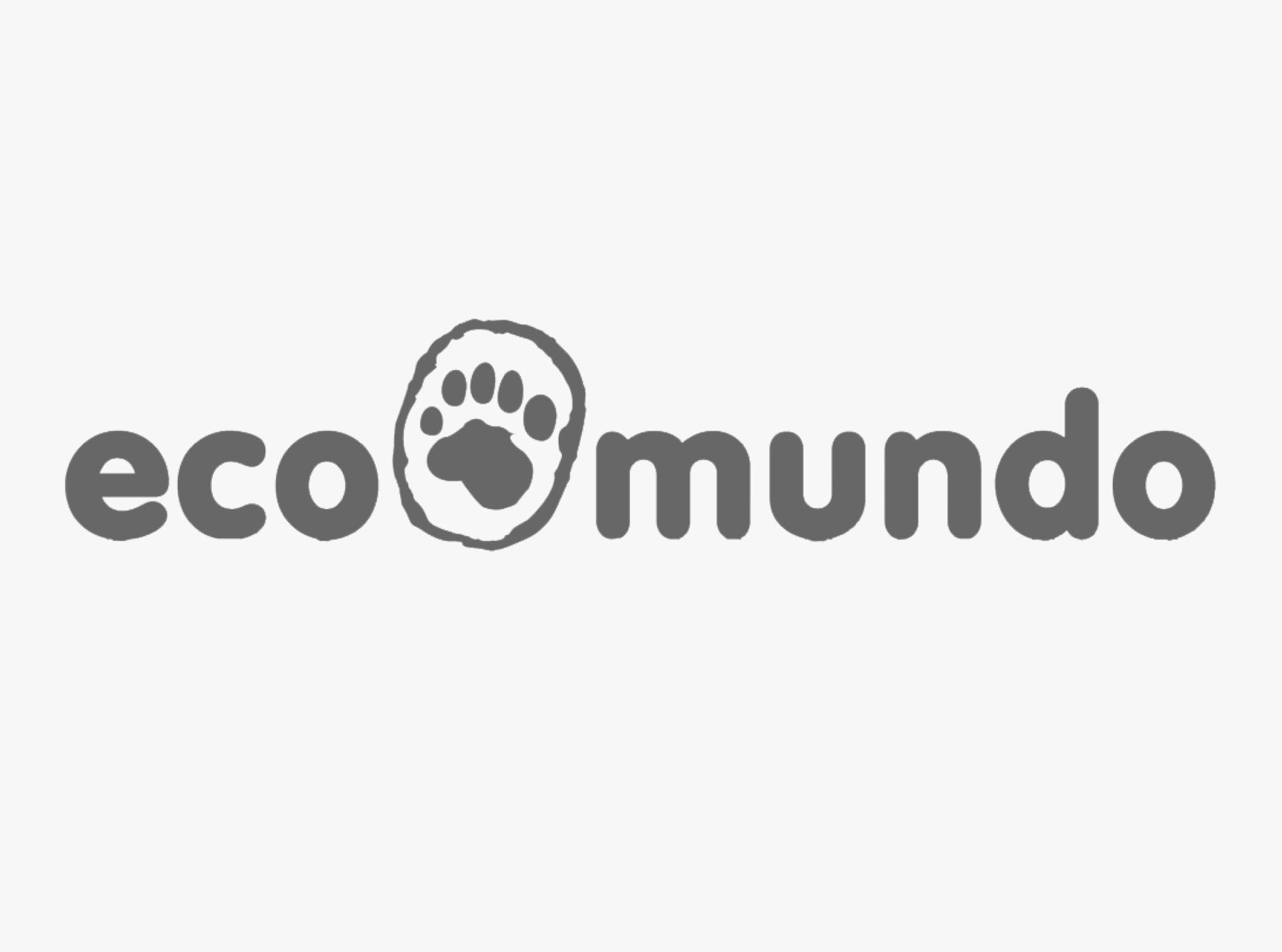stories-ecoMundo.png