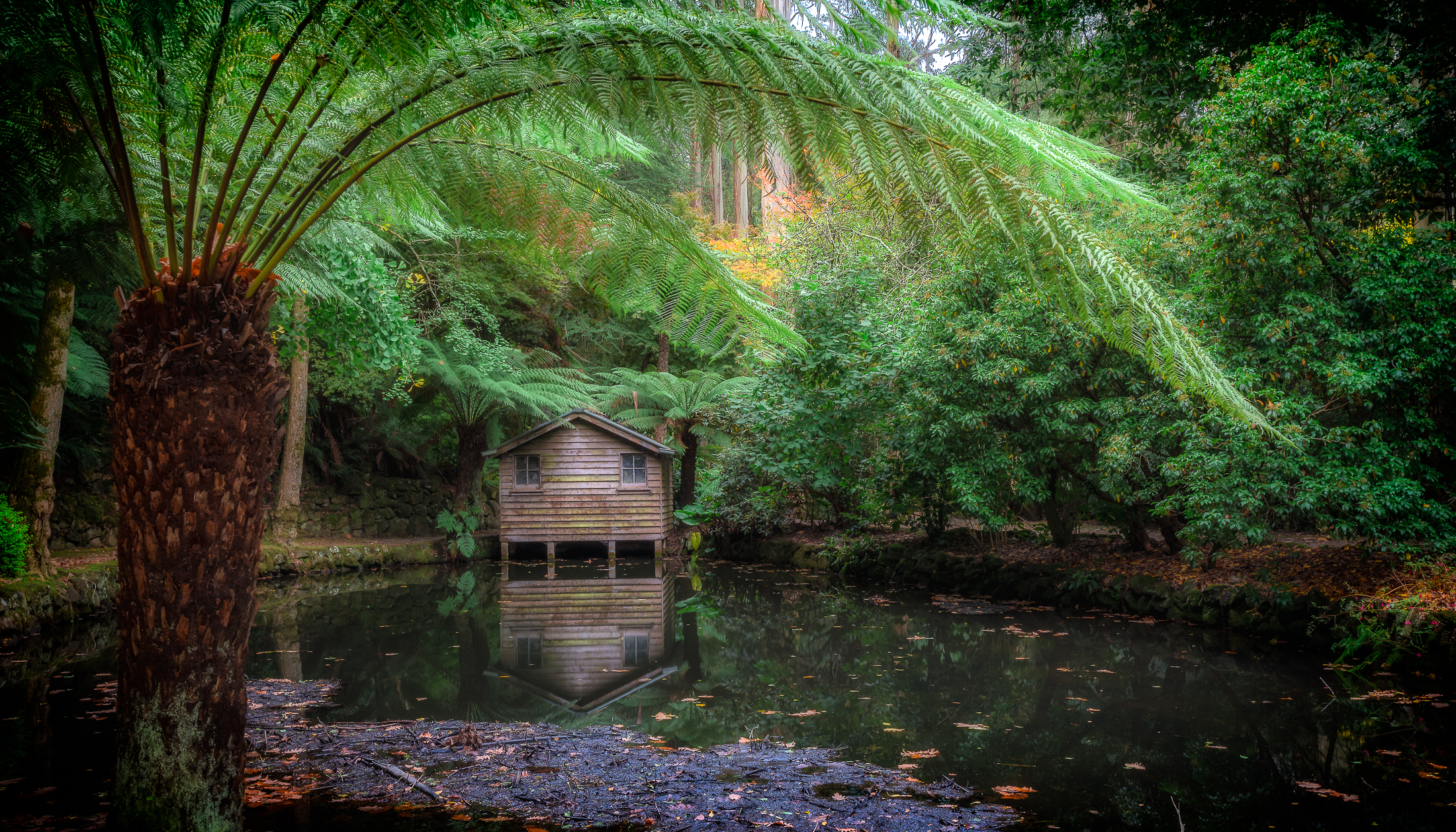 Autumn at the old boathouse on the lake at Alfred Nicholas Memorial Gardens (Sherbrooke, Victoria, Australia) - Photo by Paul Tadday