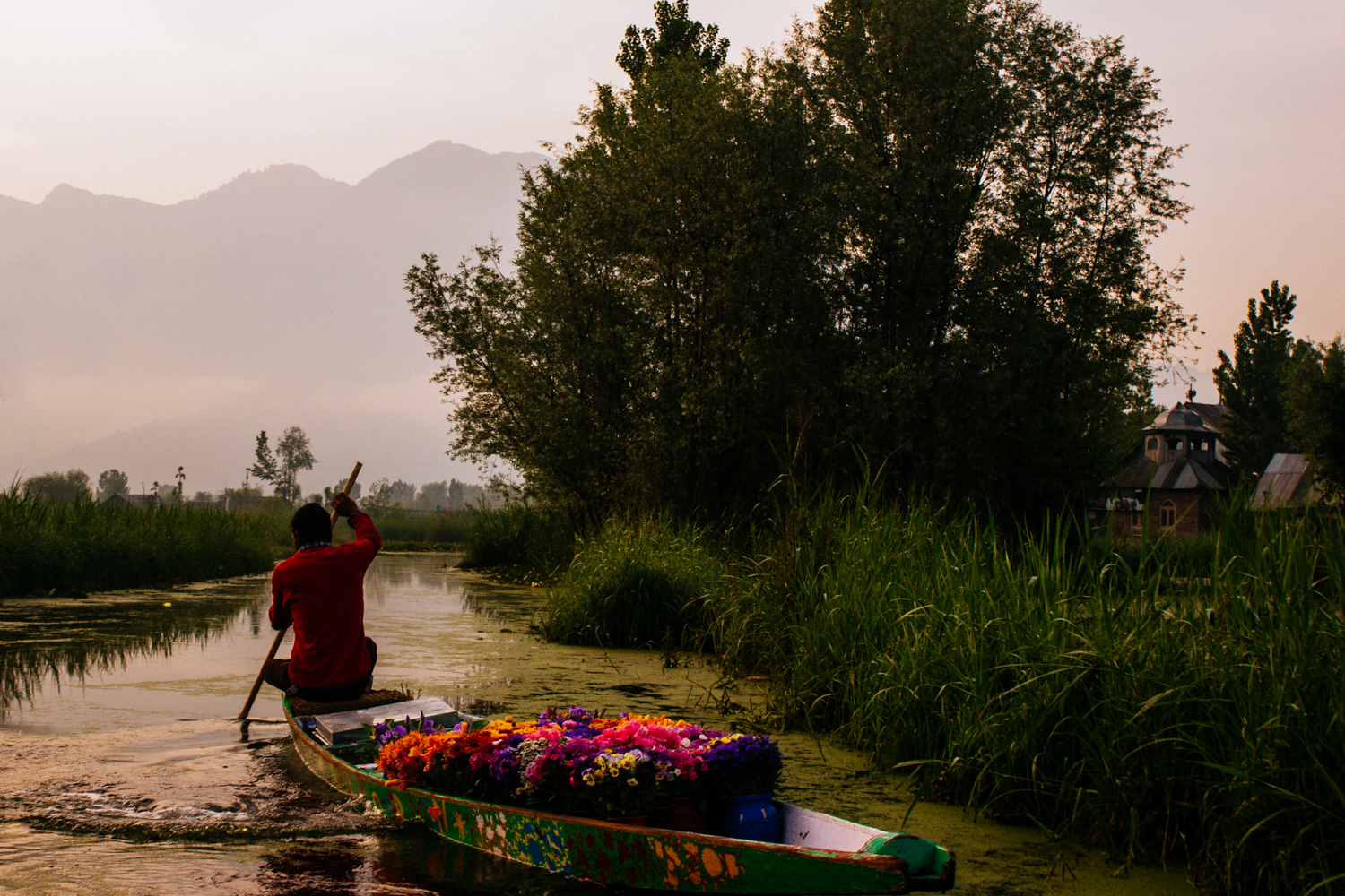 A flower seller paddles home from the morning vegetable market.