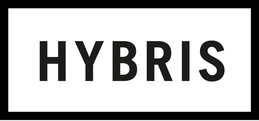 HYBRIS_LOGOTYPE_2012_newsletter.jpg
