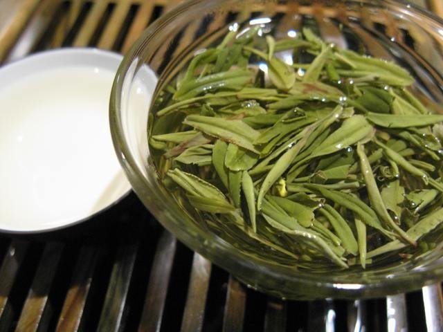 Yellow tea in its natural habitat.