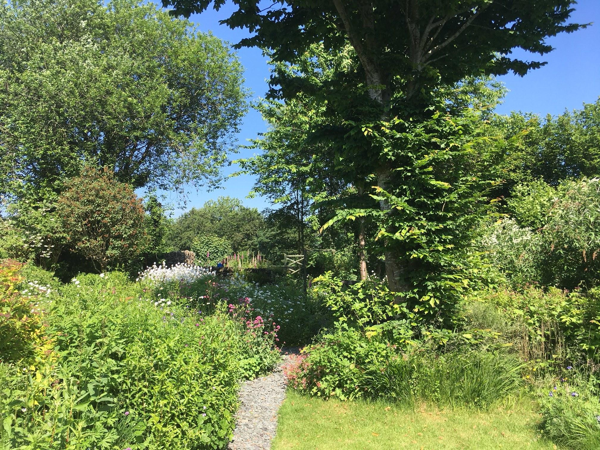 Our garden - almost as good as...