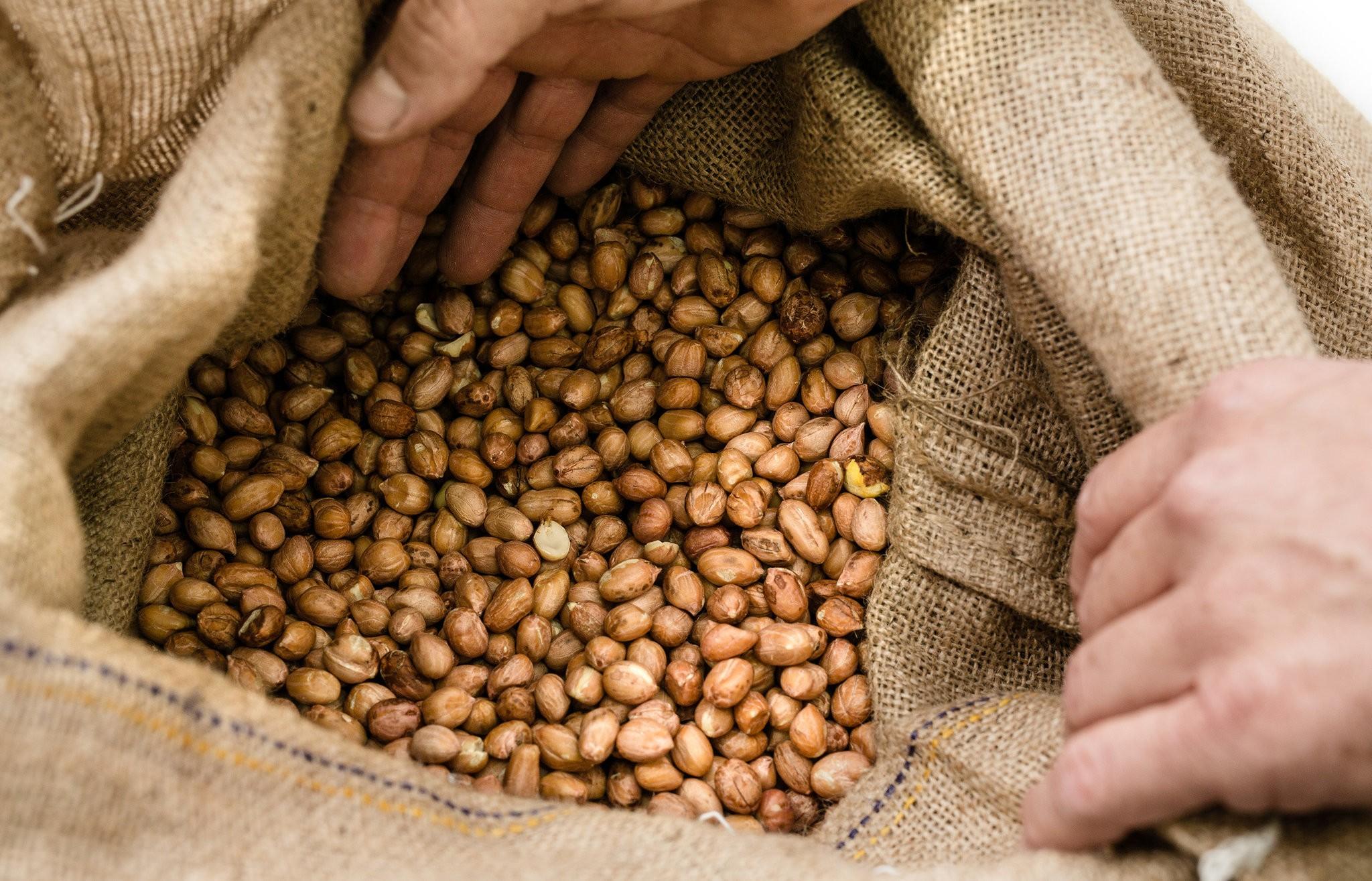 NYT peanuts in bag.jpg