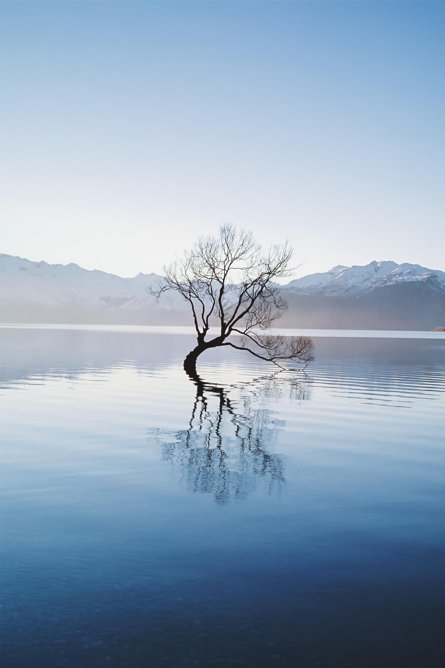 New Zealand - Blablabla...
