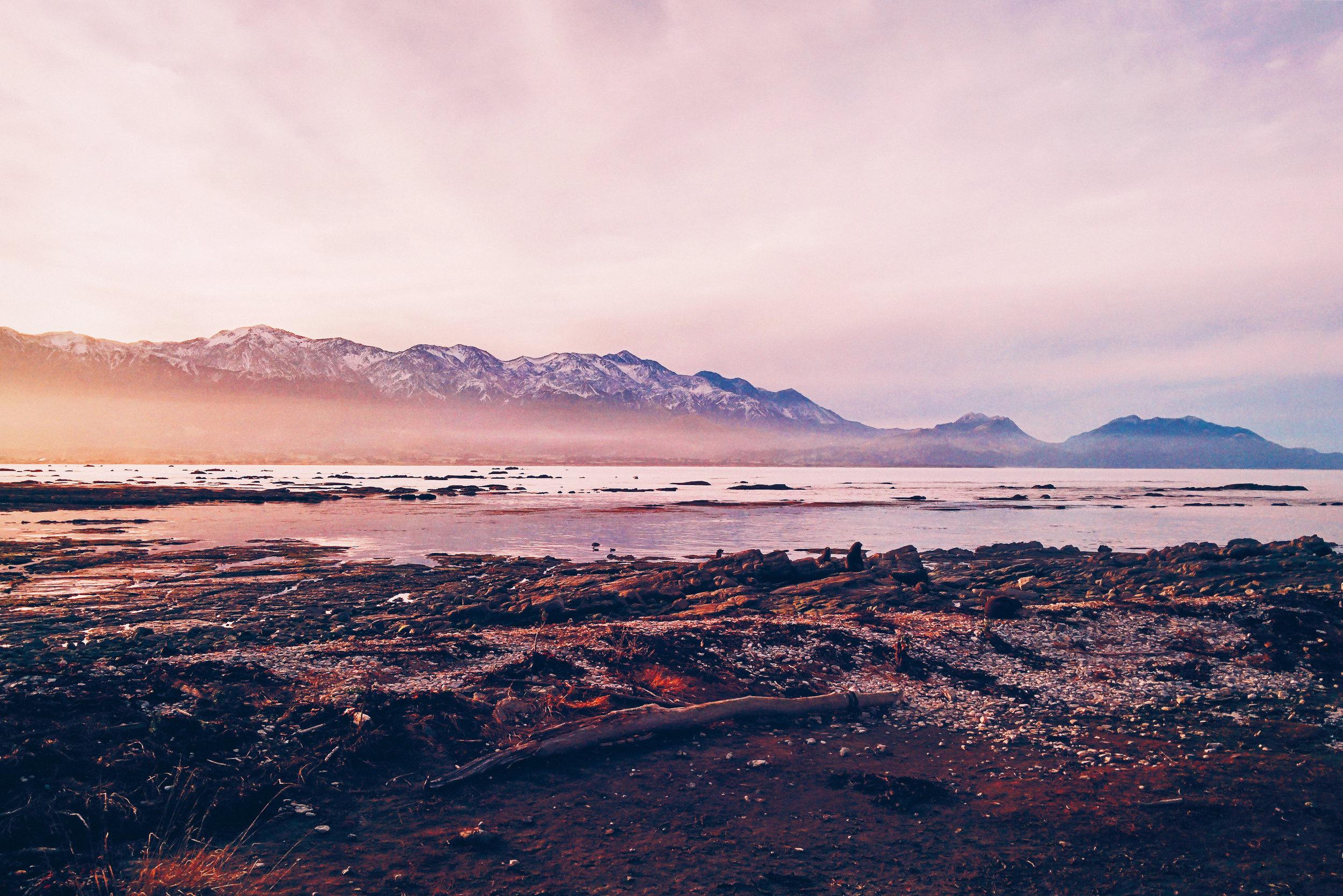 NZ site-18.jpg