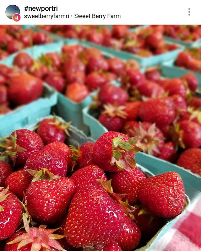 These next few weeks are busy as heck but #blessed with good stuff. But I'm telling you, world, that I WILL find time to go pick some of these delicious gems. And by some I mean boatloads 🚣‍♂️⛴️🚢#🍓 @sweetberryfarmri It's #strawberry picking season y'all. #strawberryshortcake I'm coming for you.