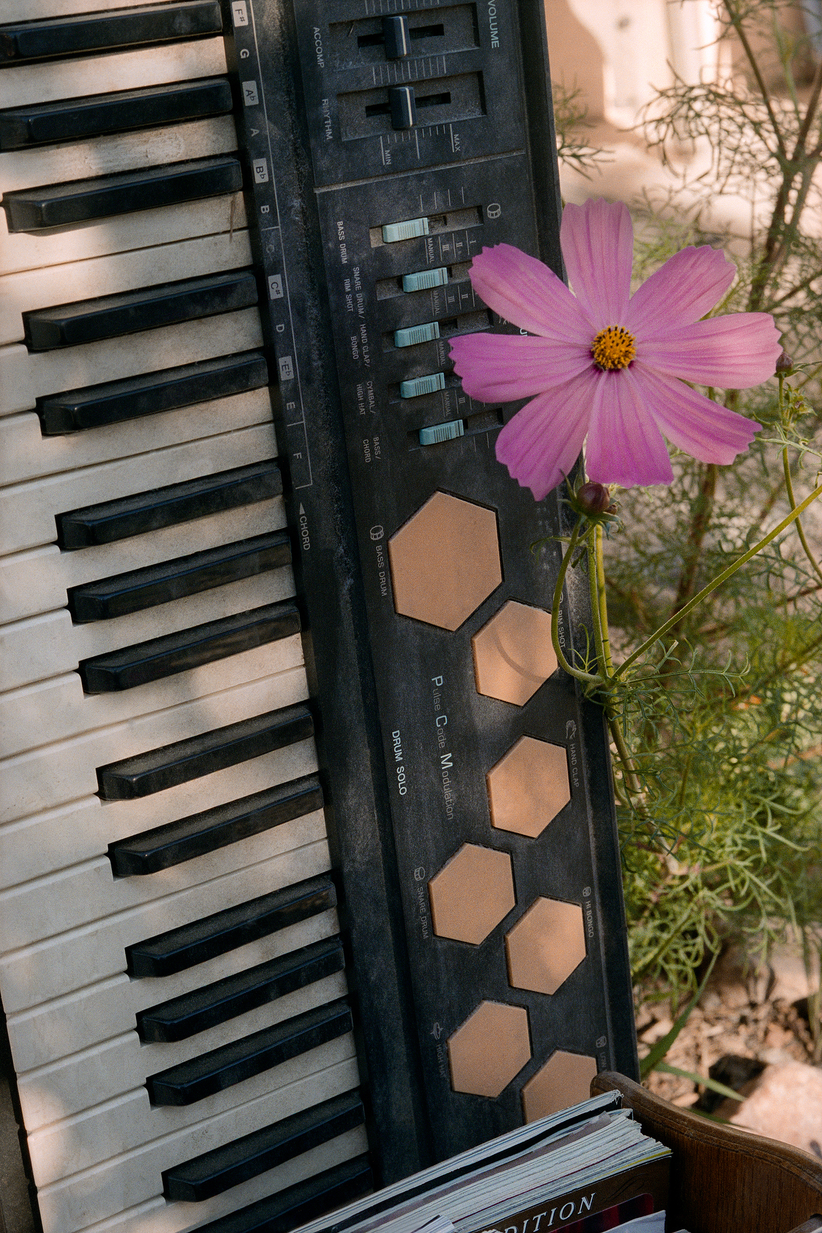 14. keyboard & flower.jpg