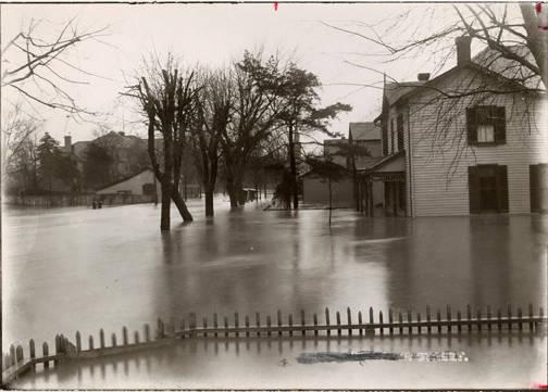 Flood 3.jpg