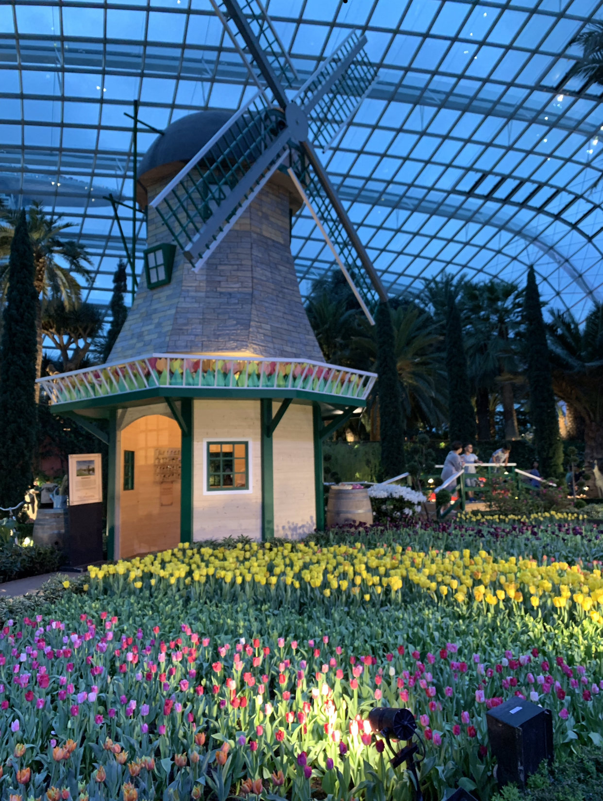 Gardens By The Bay : Flower Dome