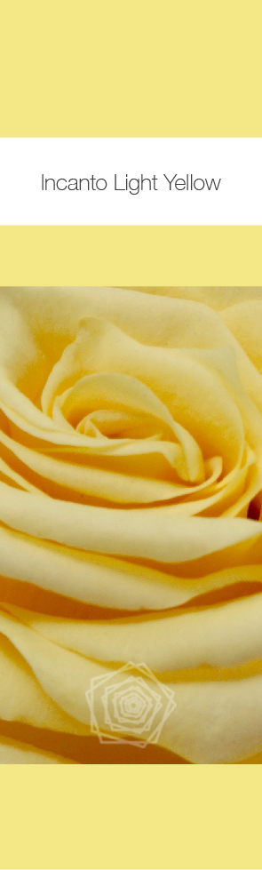 Light Yellow.jpg