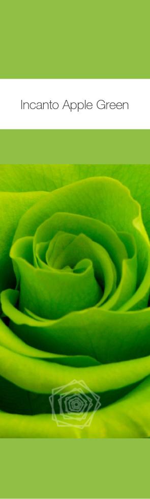 Apple Green.jpg