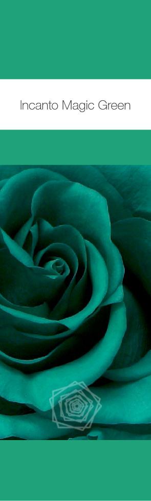 Magic Green.jpg