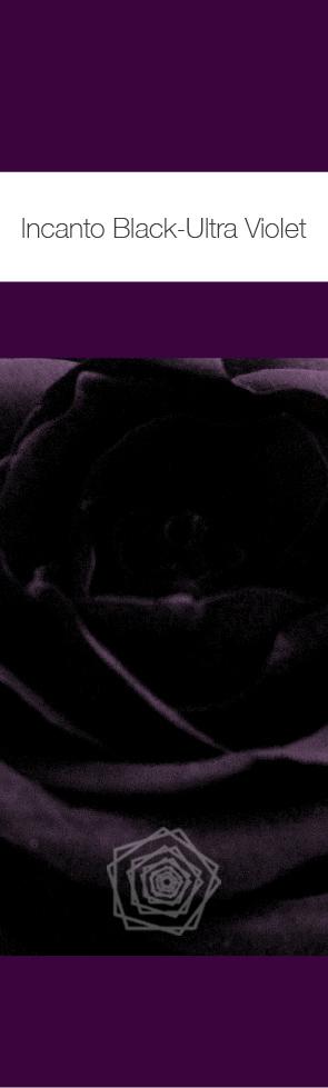 Black Ultra Violet.jpg