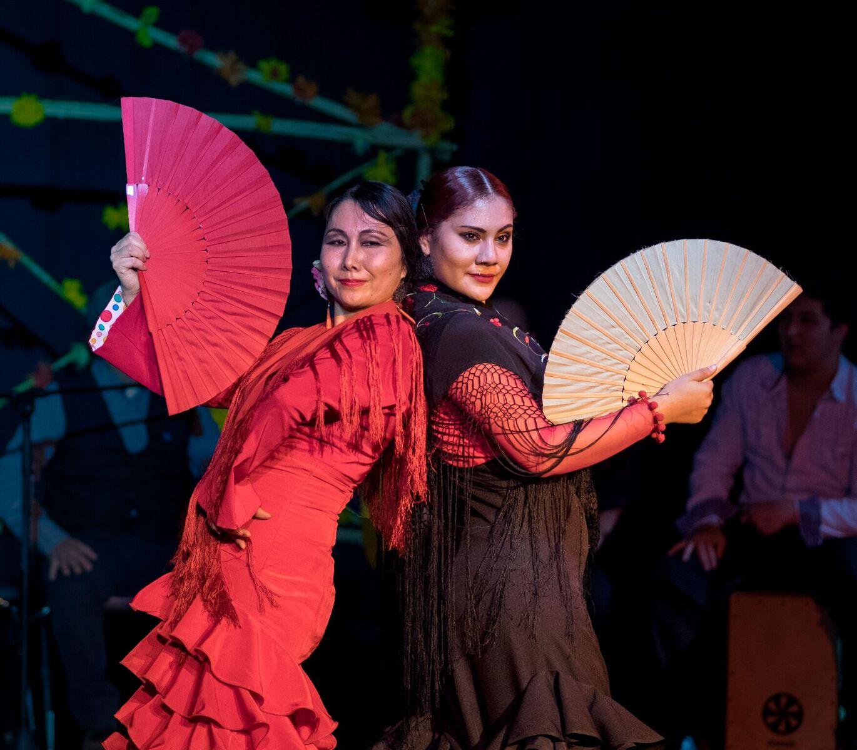 flamenco6.jpg