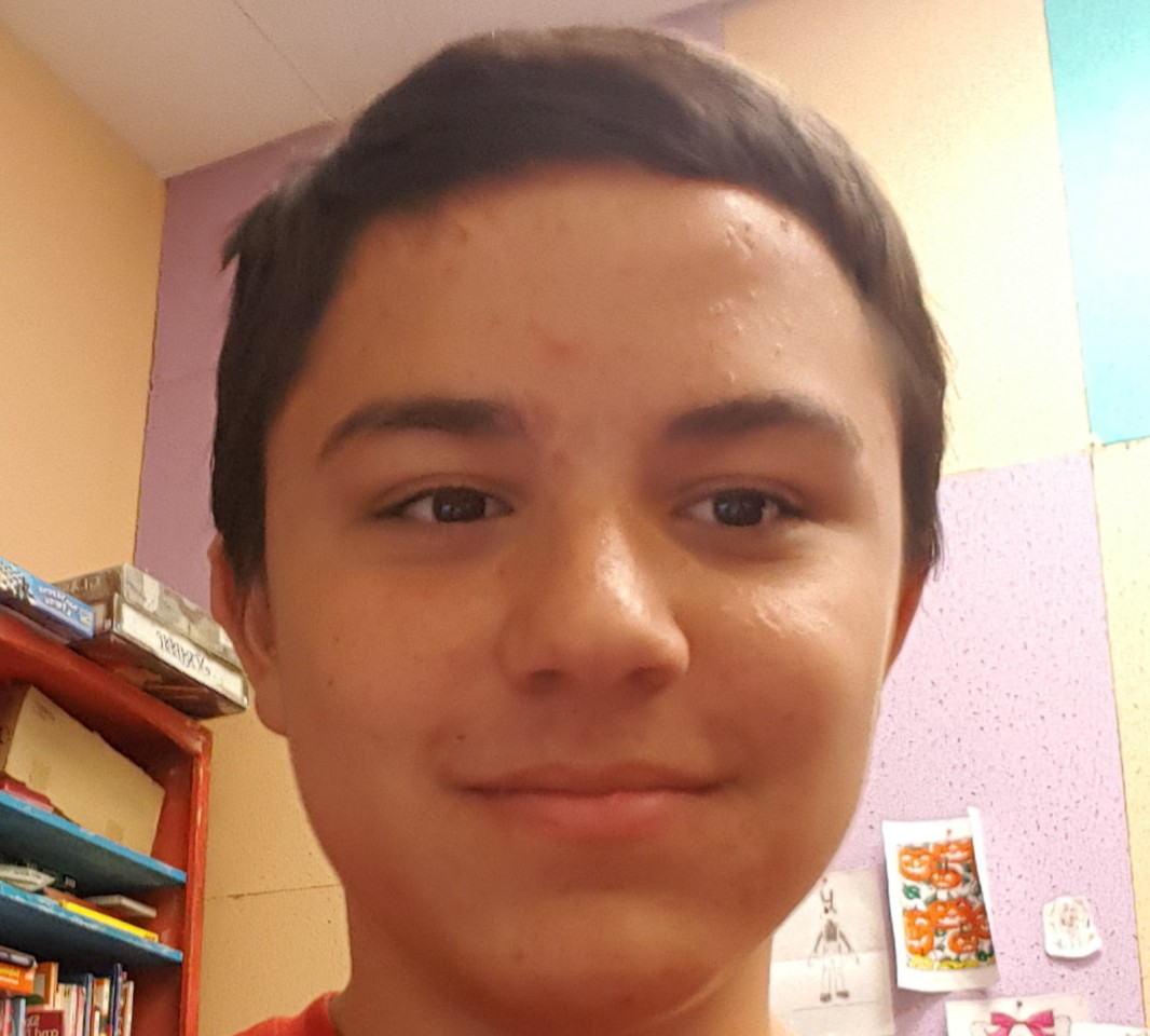 Marcos Cuevas   This is Marcos Cuevas. He is 14 years old and is one of our dance students. he takes classes with his brothers and is the middle sibling. The classes he takes are gymnastics, comic book drawing, drama, and folklorico and is also one of our web developers.