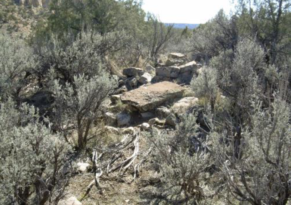 Photograph of site in the Recapture ATV Trail area.