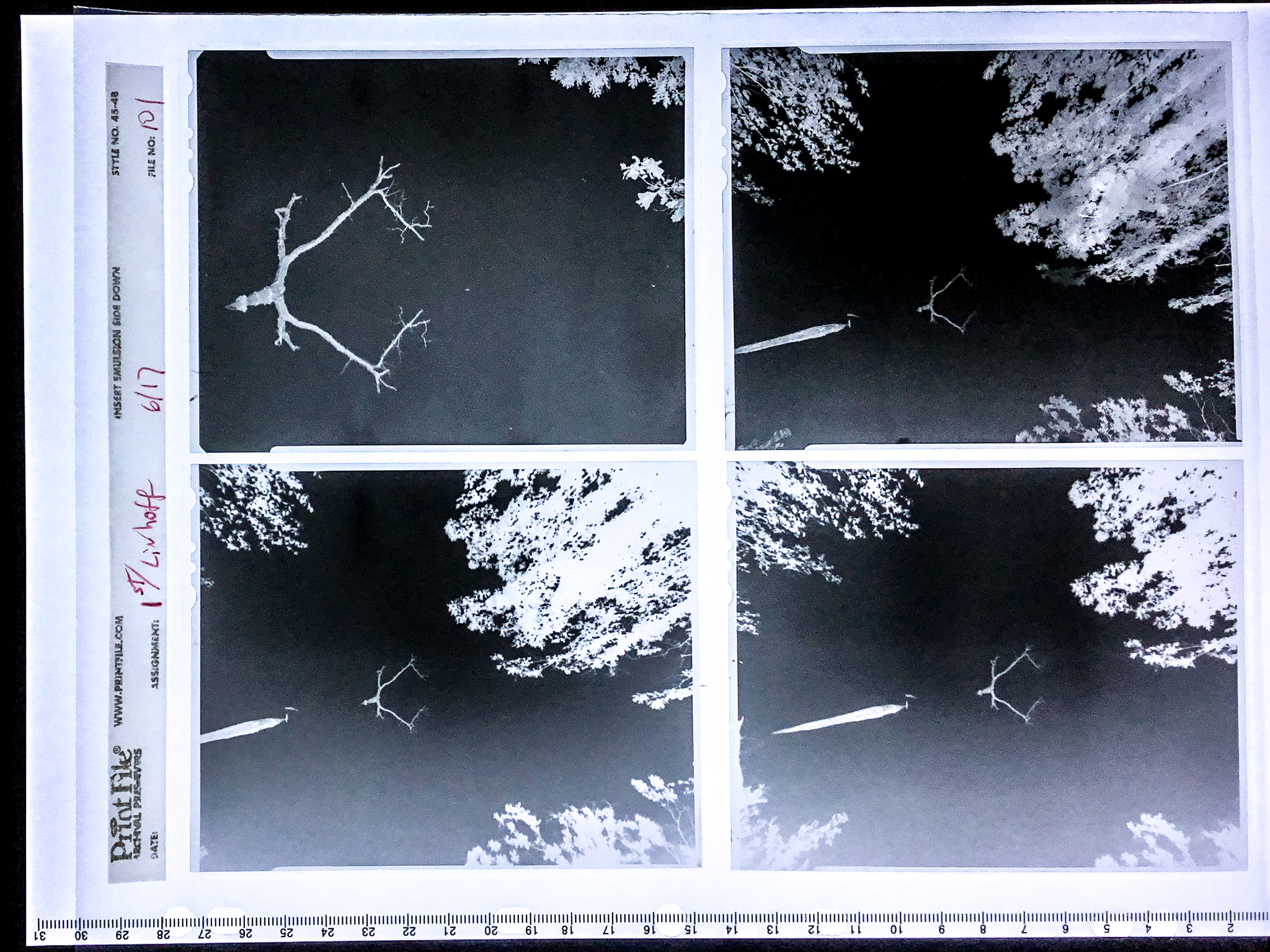"""Negative Contact Prints"" will occasionally be posted along with a selected image shot on film."