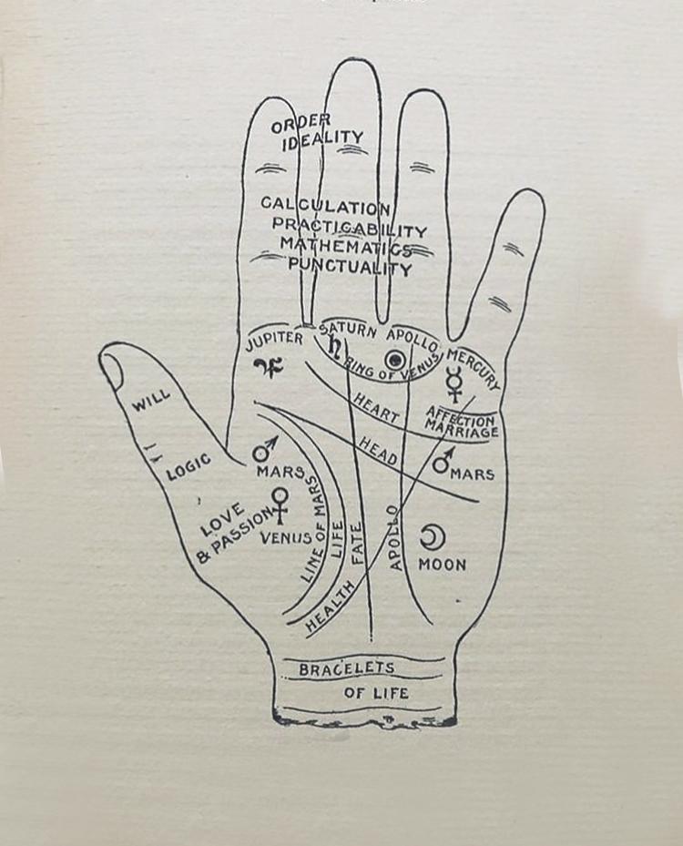 Richard.palmistry.fingertips.jpg