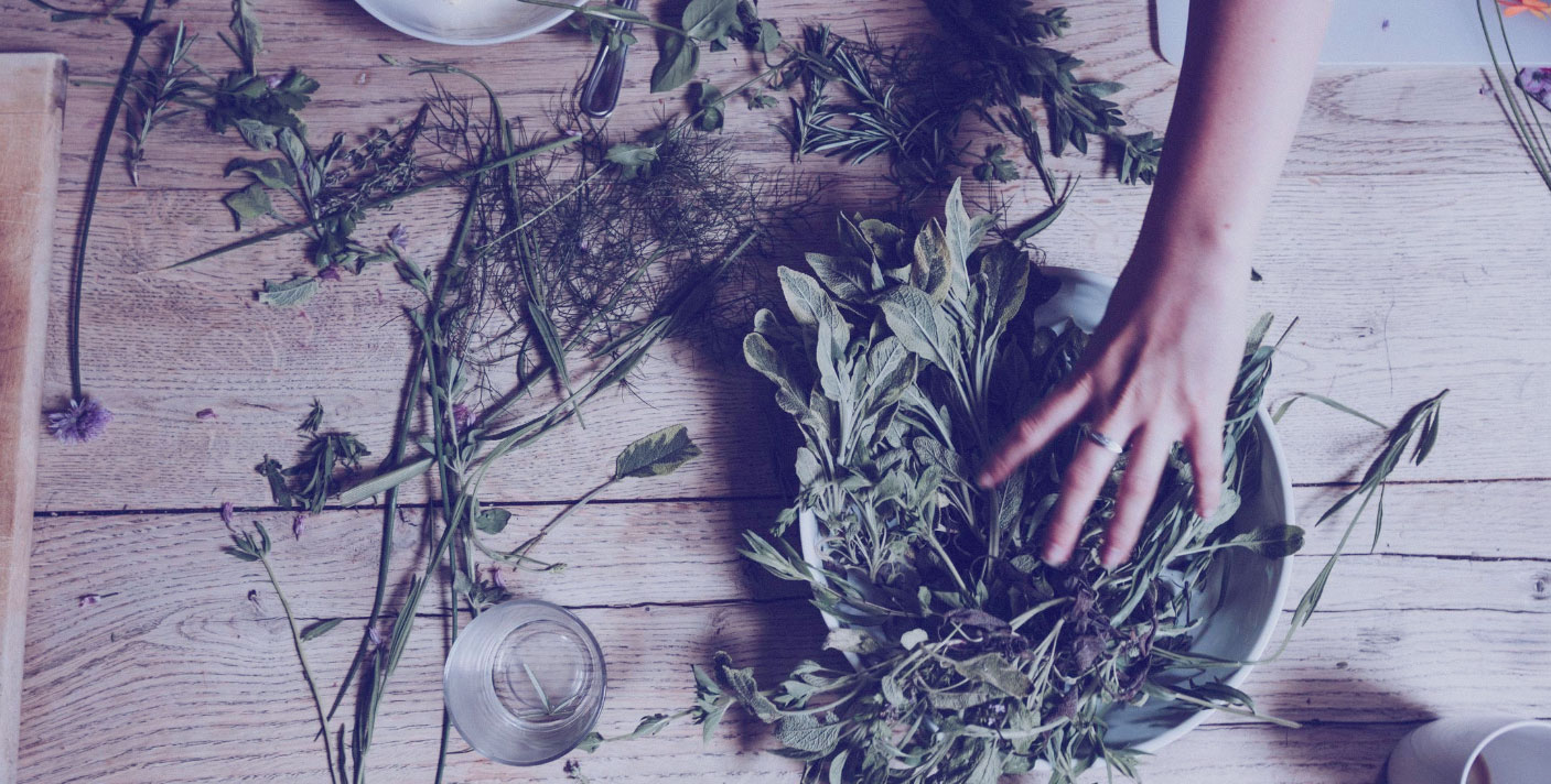 2. HERBALISM 101 - Brooklyn | WEDNESDAY SEPTEMBER 25an introduction to using herbs as medicine with The Alchemist's Kitchen