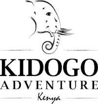 KidogoAdventure