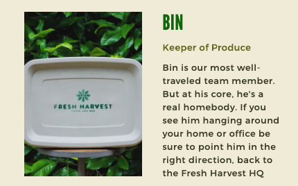 """The Bin"" is the final product of phase 1 of the new product deployment."