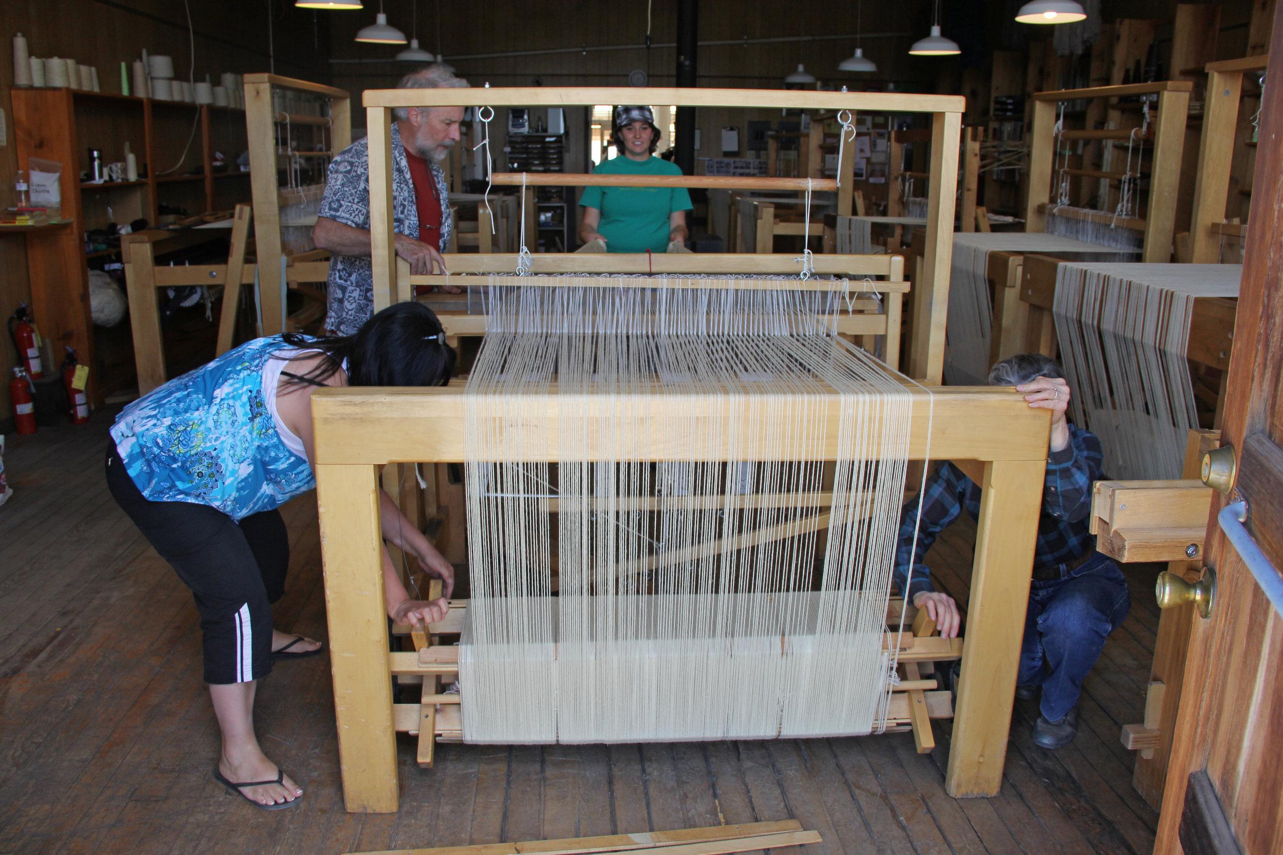 The Looms — Tierra Wools