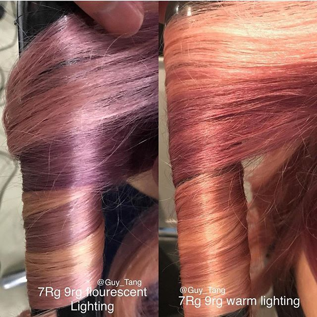 . #differentlight  thank you @guy_tang