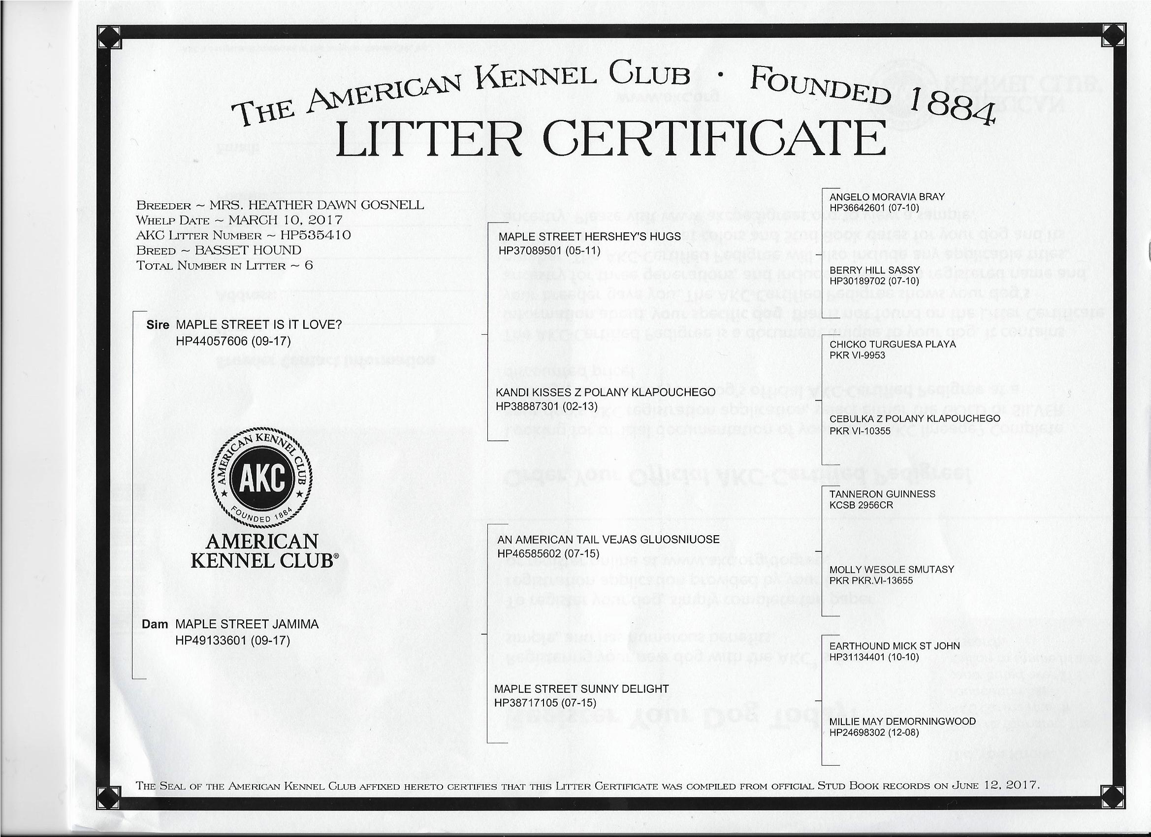 """""""A"""" Little Secret Litter Certificate"""