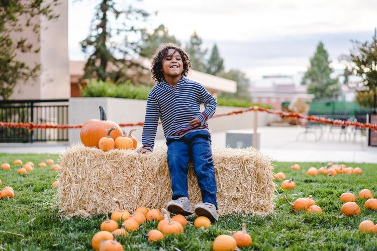 pets+_+pumpkins-20.jpg