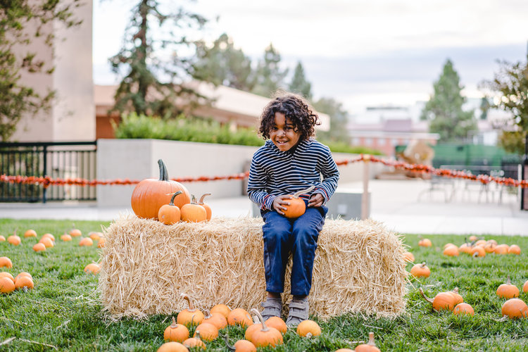 pets+_+pumpkins-21.jpg