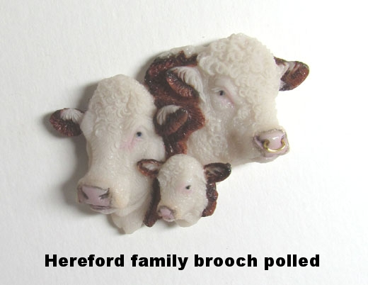 Hereford Bull Family polled.JPG