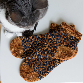 Not Your Average Cat Lady Socks photo credit: Emma Kerian