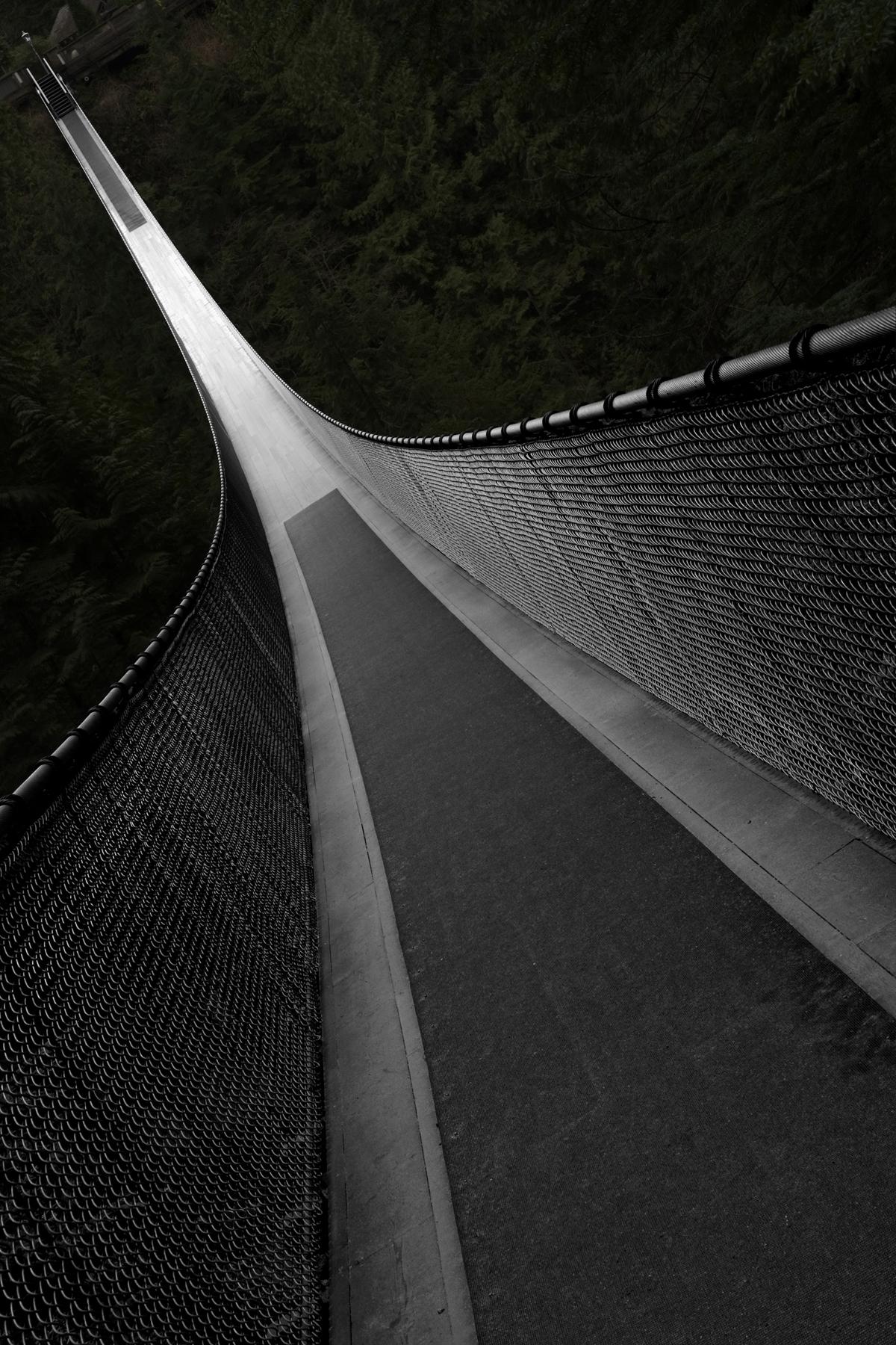 Figure 2 Capilano Bridge - Rotated