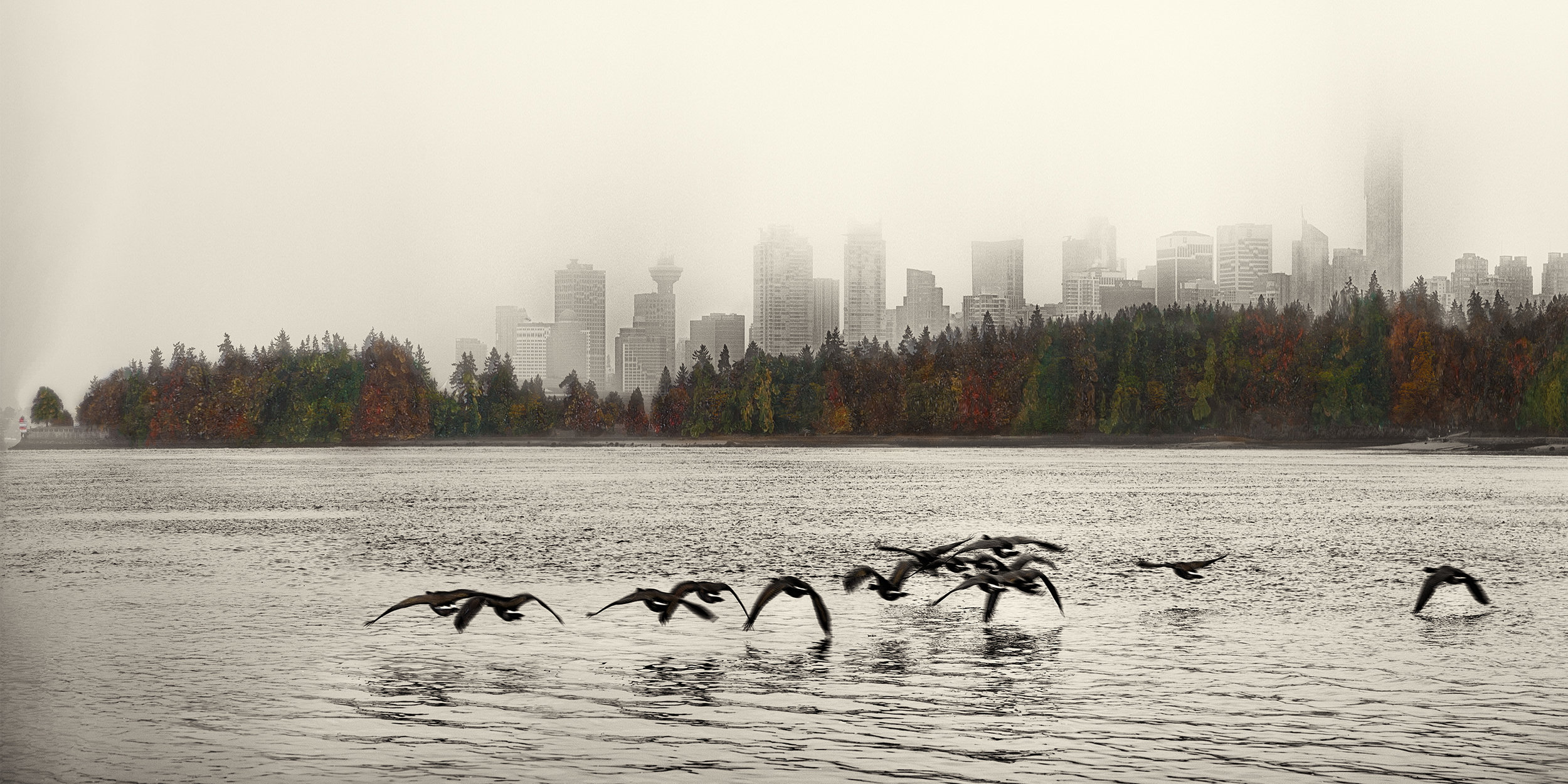 Skyline with Geese