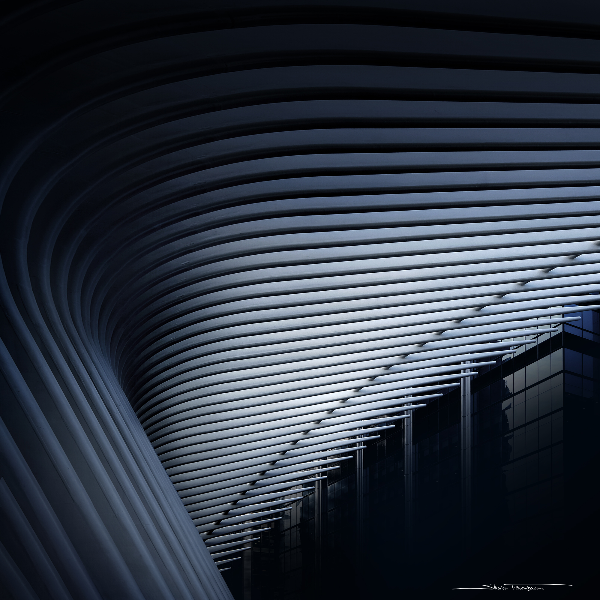 Oculus Abstract 4