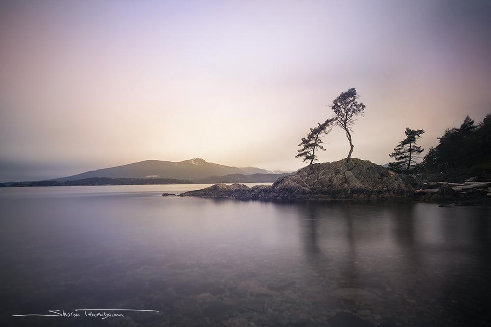 Three Trees Bowen Island